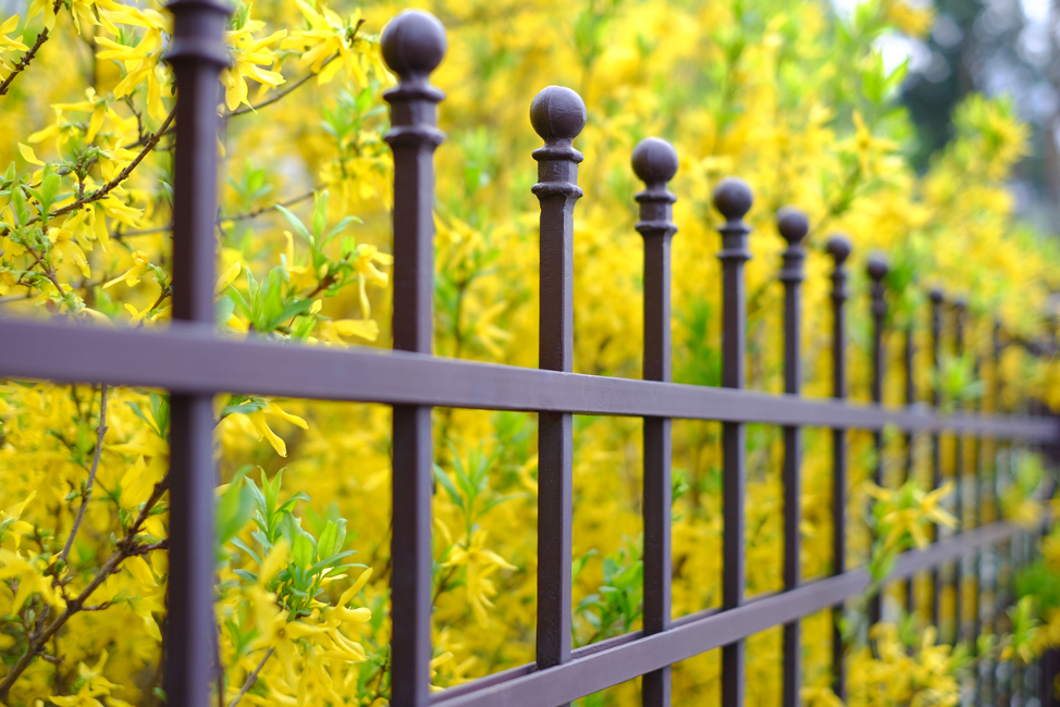 Wrought iron fence around a La Grange home